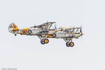 Hawker Nimrod Mk I, Hawker Nimrod Mk II; FAA