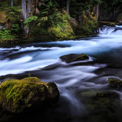 Forest Moss & River Stones – Eugene to Bend, OR