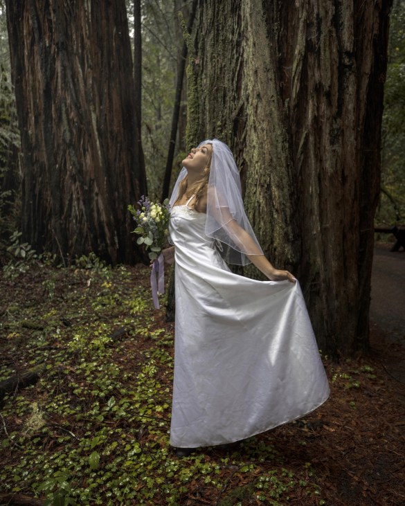 Nicole in the redwood forest