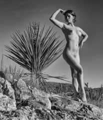 Atop a rock stood a yucca, and Alexa made the most of it.