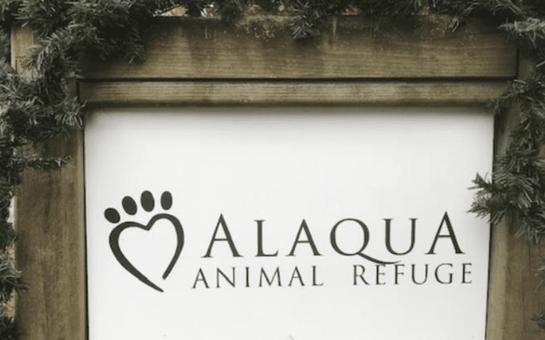 Alaqua Animal Refuge Waiving Adoption Fees for December