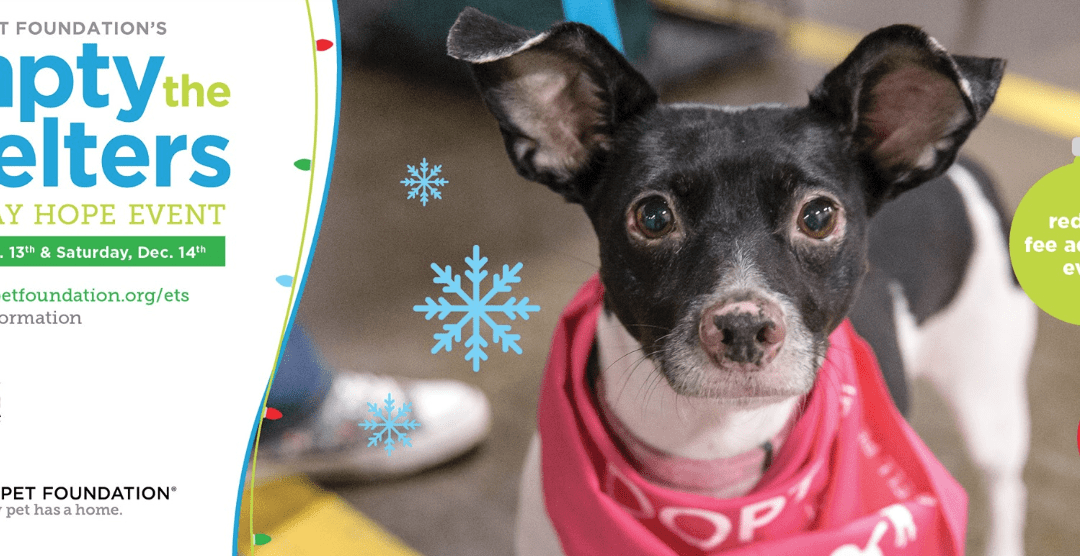 Alaqua Participating in Empty the Shelters Event