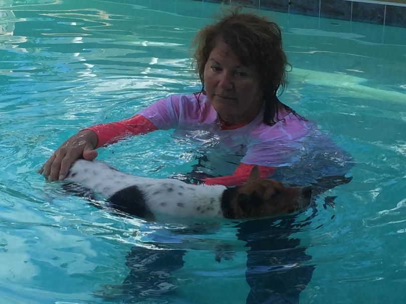 Swim Dog 30A and Alaqua Help Dogs Through Swim Therapy