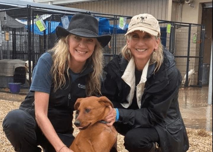 Alaqua Animal Refuge Featured on Hallmark Channel