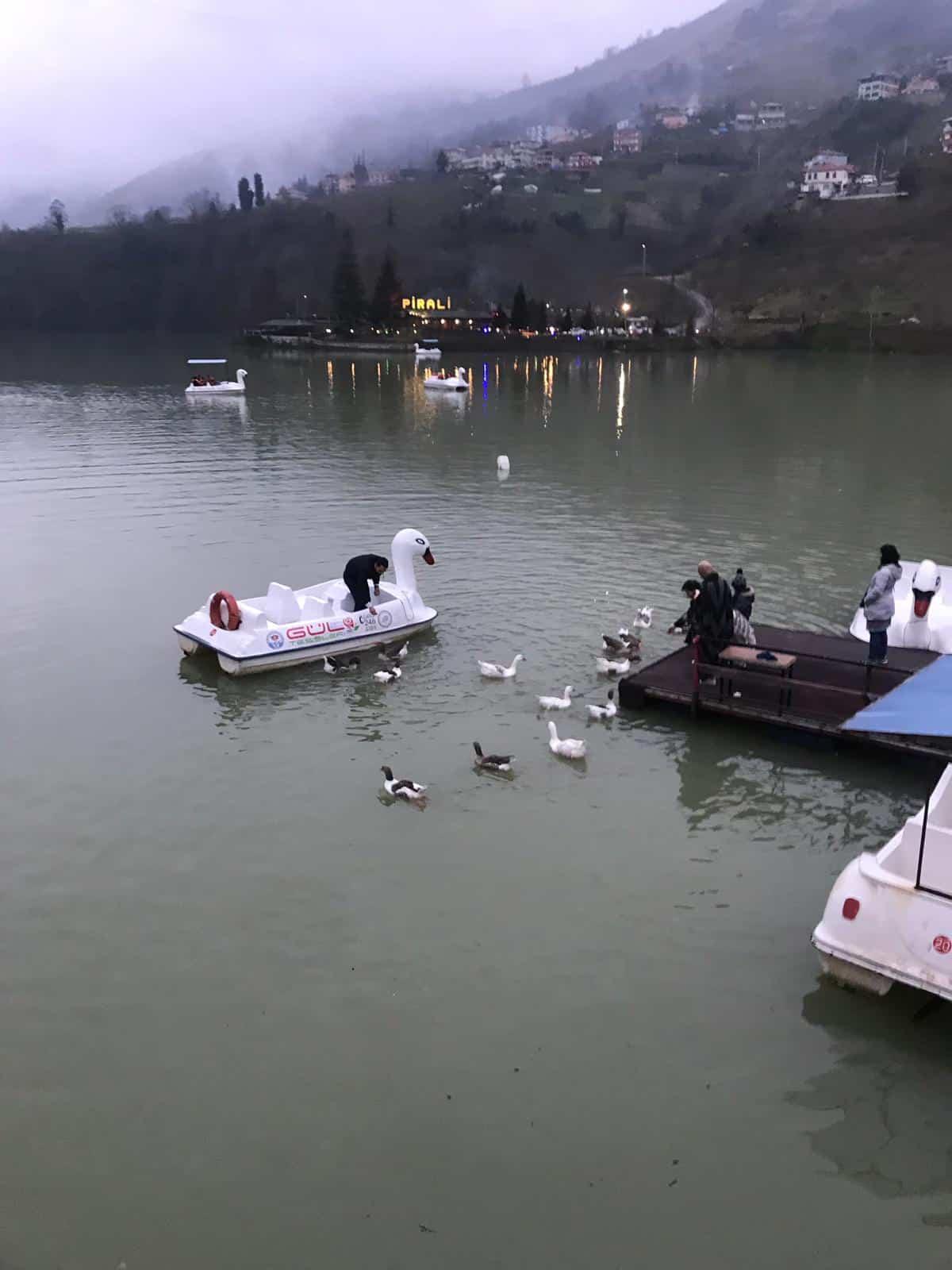 بحيرة سيرا (3)