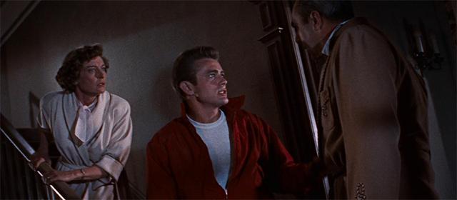La fureur de vivre (1955)