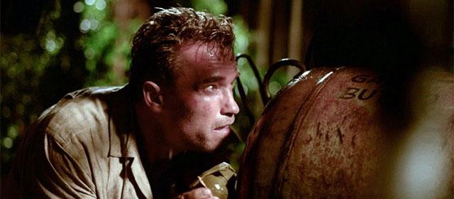 Arnold Schwarzenegger dans Dommage Collatéral (2002)