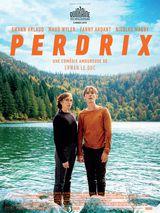 Affiche de Perdrix (2019)