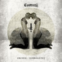 Castratii: Telling of the Bees