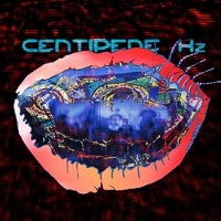 Animal Collective: Centipede Hz