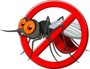 Вместо корумпирани зад решетките, броим комари по Дунава (?)