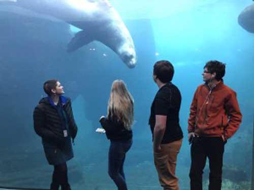 Students Coached by Alaska Sea Grant Make Good Showing at Tsunami Bowl