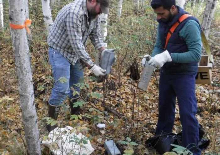 Setting traps to catch an Alaska virus