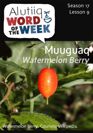 Alutiiq Word of the Week, August 24th, 2014