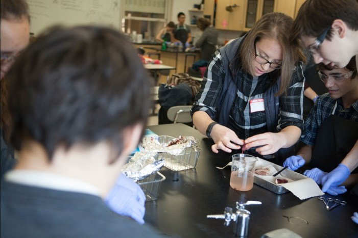 Polaris Students Work with UAA Grad Student to Find Plastic in Seabird Stomachs