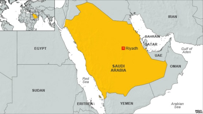Report: Saudi Arabia Arrests 9 Americans Among Terror Suspects