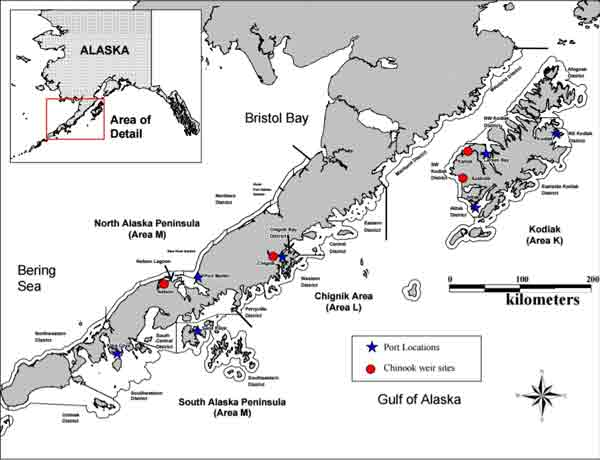 Map depicting the Westward Region and commercial salmon fishery districts of Kodiak, Chignik, and Alaska Peninsula management areas. Image-ADF&G