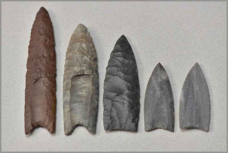 Pictured is a collection of Clovis point replicas and casts in the archaeology lab at Kent State University. CREDIT: Kent State University
