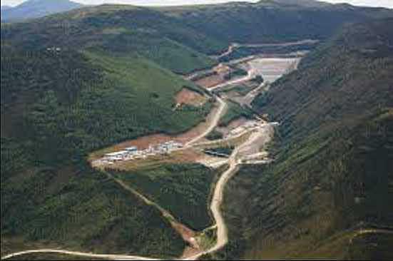 Fatal Pogo Mine-Area Black Bear Mauling Remains Under Investigation