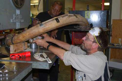 Slicing a 20,000 Year-Old Mammoth Tusk