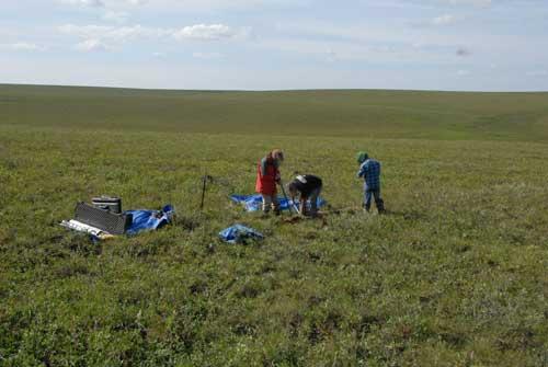 Scientists Find Massive Reserves of Mercury Hidden in Permafrost