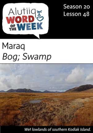 Bog/Swamp-Alutiiq Word of the Week-May 27th