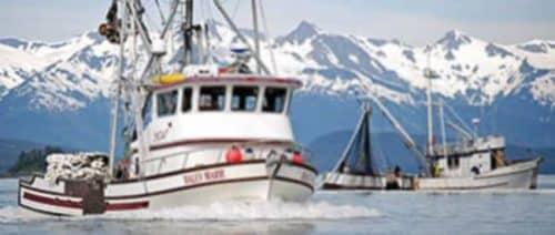 Alaska's Commercial Wild Salmon Harvest Tops 200M Fish