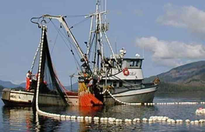 Governor Pauses AO 279 Implementation to Avoid Fisheries Disruption