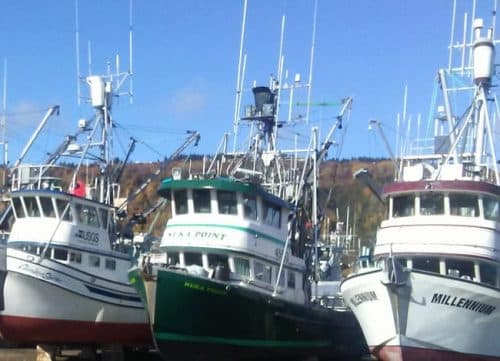 Congressman Don Young Leads Legislation to Strengthen Safety Programs for Alaska's Fishermen