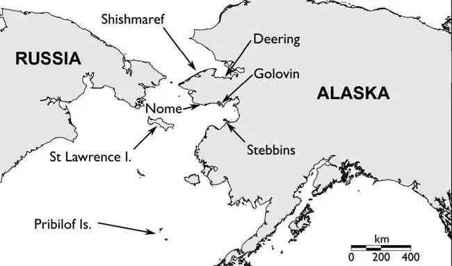 USFWS Believes Bering Sea Seabirds Died from Starvation