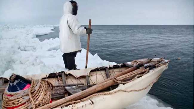 An Inupiat whale hunter standing by an umiak, traditional seal skin boat, at Point Hope, Alaska. Image courtesy of Frontier Scientists.
