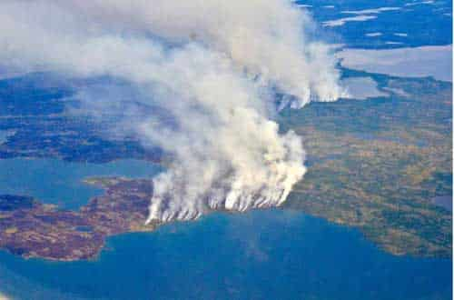 Fires, Floods and Satellite Views: Modeling the Boreal Forest's Future