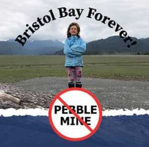 Pebble Lies & Lobbyists: A Payday for Washington, A Scam for Alaskans