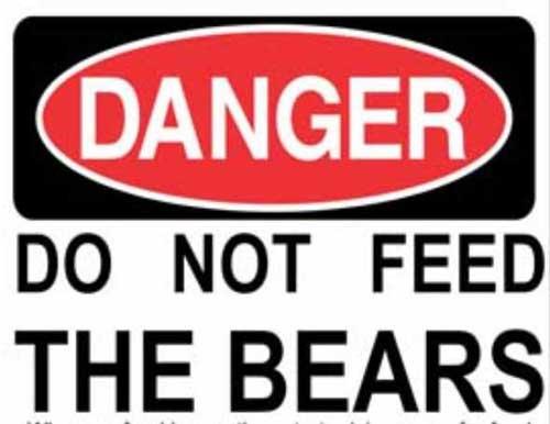 Palmer Man Cited after Shooting at Bear in Trash