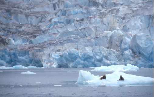 International Climate Report holds Special Value for Alaska