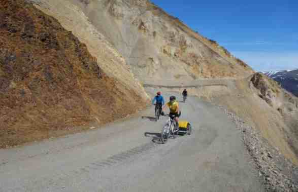 Denali Park Road Failings and Other Stories