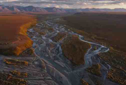 Alaska Wilderness League Applauds Biden Executive Order Halting Arctic Refuge Oil Program