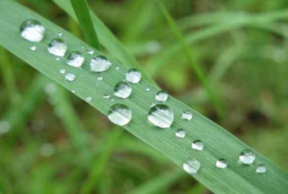 Rain falls, as it always has