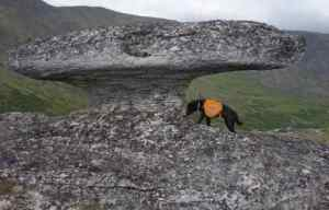 A Mushroom-shaped granite tor 60 miles from Fairbanks. Image-Ned Rozell