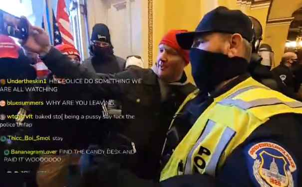 Probe Demanded After Footage Shows Capitol Police Standing Aside for Pro-Trump Mob