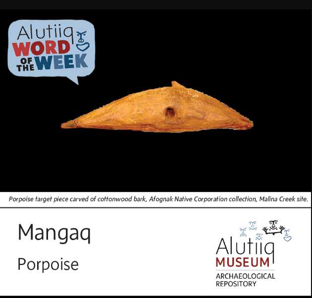 Porpoise-Alutiiq Word of the Week-May 30th