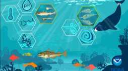 Predicting Future Fish Productivity by Better Understanding the Role of Habitat in the Life of a Fish