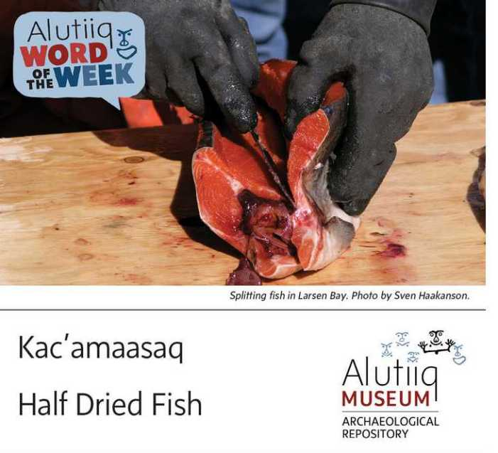 Half-Dried Fish-Alutiiq Word of the Week-August 15th