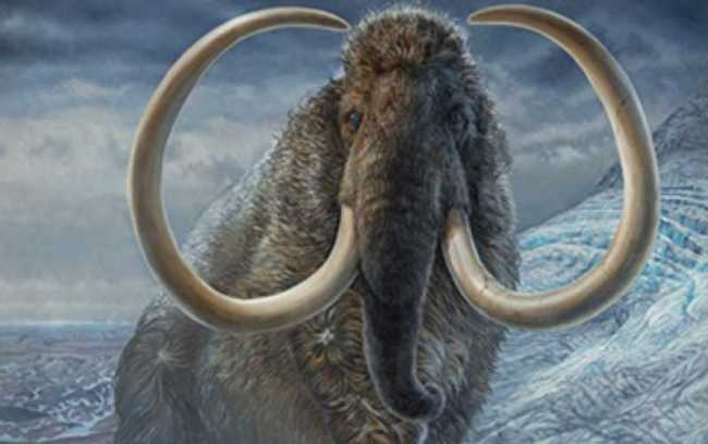 An adult male woolly mammoth navigates a mountain pass in Arctic Alaska, 17,100 years ago. Credit: James Havens