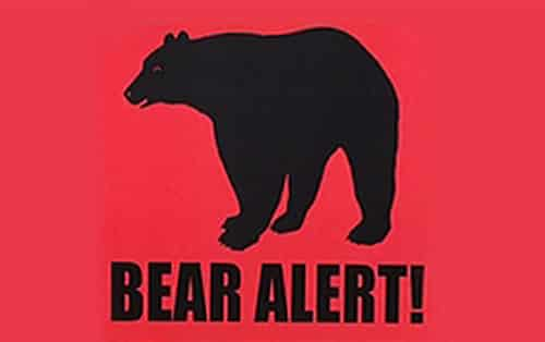 BLM Closes Taylor Highway Campground due to Bear Activity