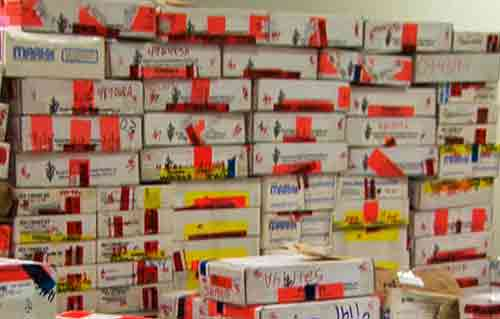 House of Representatives Passes Bill Requiring Faster Processing of Rape Kits