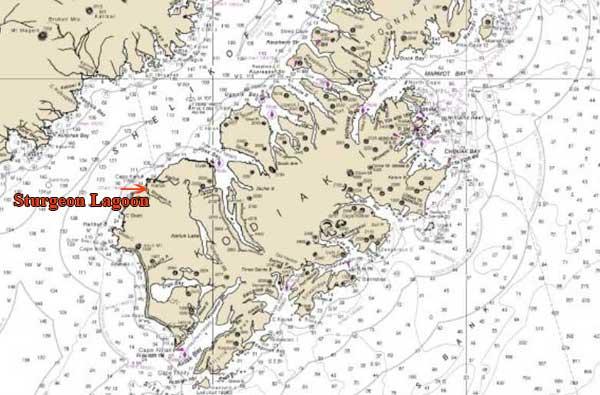 AST Opens Investigation into Bear Hunter's Death on Kodiak Island