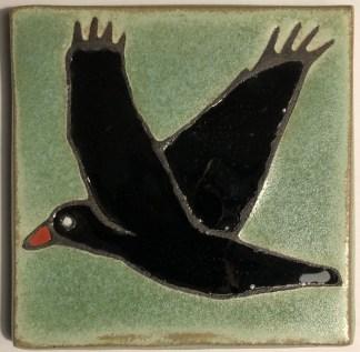 Flying Raven Green Background