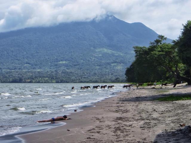 Katson autiota hiekkarantaa ja Maderas-tulivuorta. Rannan toisessa päässä on hevosten ja lehmien juottopaikka.