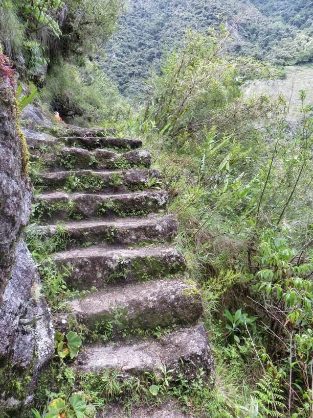 Suurin osa portaista oli hyvässä kunnossa yli viidensadan vuoden jälkeenkin. Ja hyvä niin, sillä vieressä oli viidensadan metrin pudotus Urubambaan.